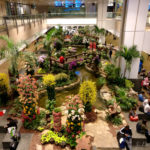 A Night at Singapore Airport