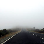 Northland: Roadtrip to the Northernmost Part of New Zealand