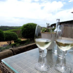 Cool Day Trip Destinations from Auckland Part 2: Waiheke Island